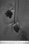 STUART BRISLEY, Luxemburg (Rose), 1997, No. 2 of a series of 8