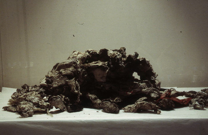 STUART BRISLEY, The Collection of Ordure, 2002
