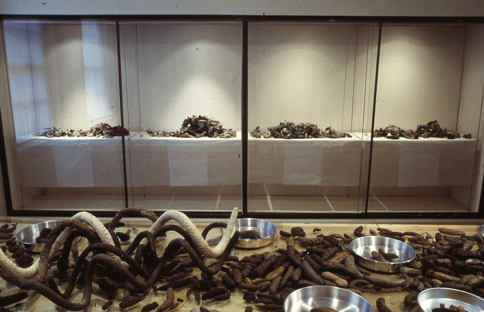 STUART BRISLEY, The Collection of Ordure , 2002, Freud Museum London